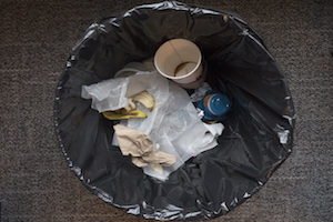 Line your garbage bags and take your garbage out regularly to deprive pests of an easy meal