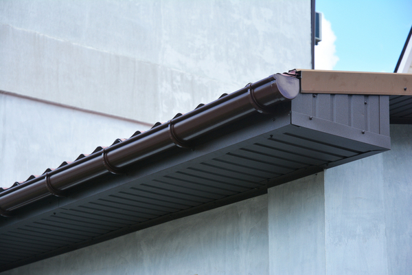 Bats frequently find their way beneath the soffit