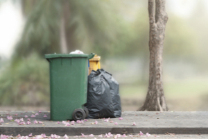 seal your garbage dumpster to keep raccoons out