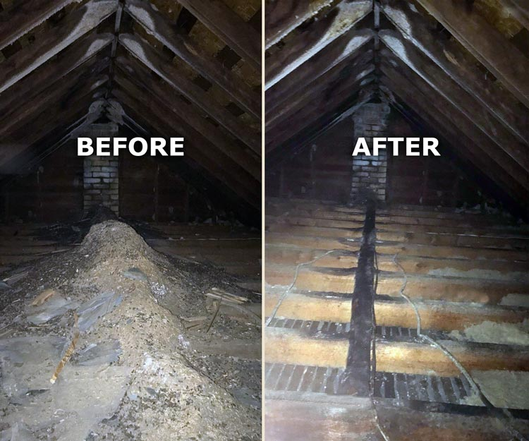 Attic Clean Out Before And After